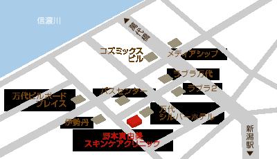 野本真由美スキンケアクリニック周辺地図